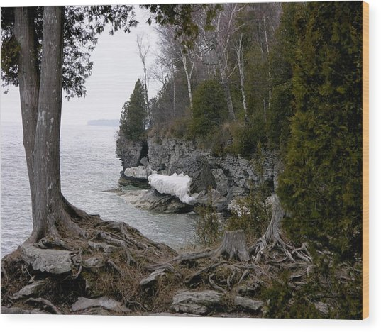 Cave Point Wisconsin Wood Print
