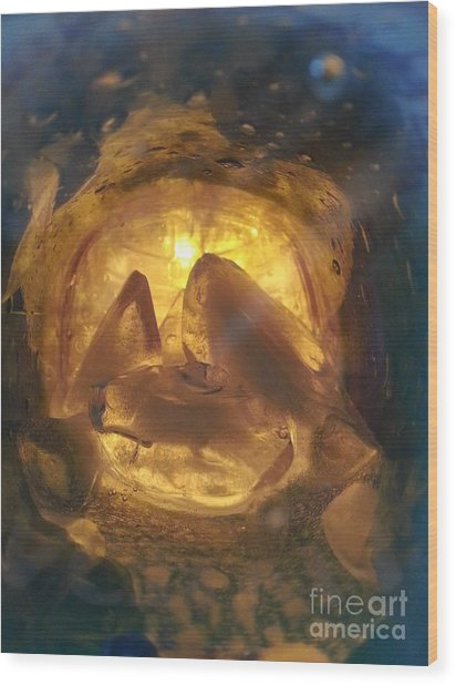 Cavern Light Wood Print
