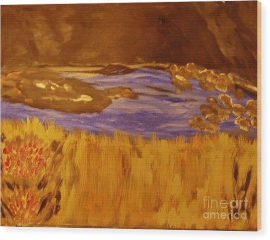 Caves And Watet Wood Print by Marie Bulger