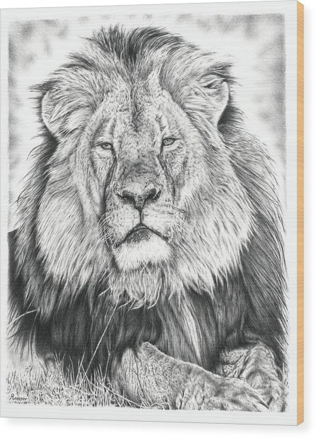 Cecil The Lion  Wood Print