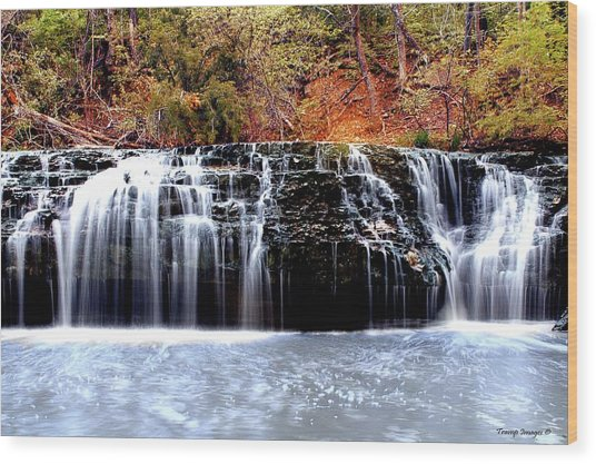 Cedar Creek Falls, Kansas Wood Print