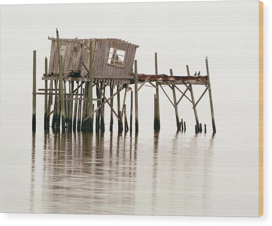 Cedar Key Structure Wood Print