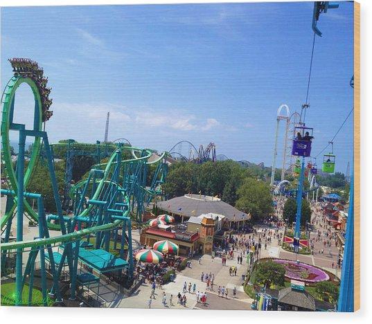 Cedar Point Amusement Park Wood Print
