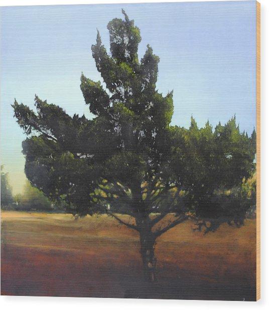 Cedar Sold Wood Print
