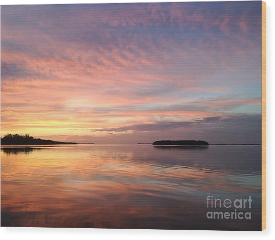 Celebrating Sunset In Key Largo Wood Print