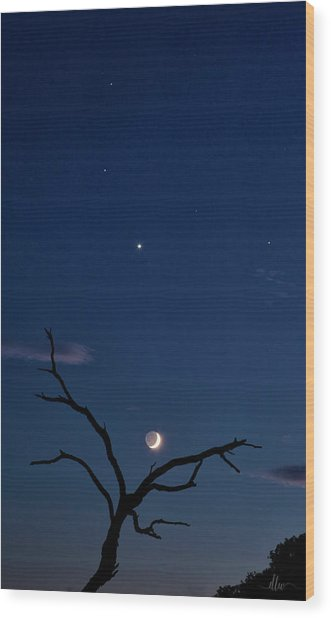 Celestial Alignment Wood Print