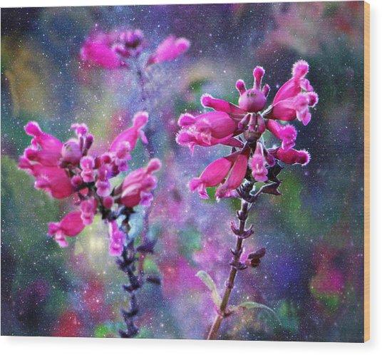 Celestial Blooms-2 Wood Print