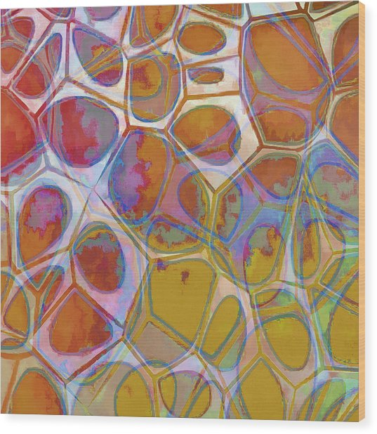 Cell Abstract 14 Wood Print