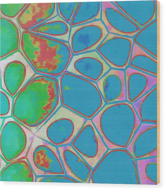 Cells Abstract Three Wood Print
