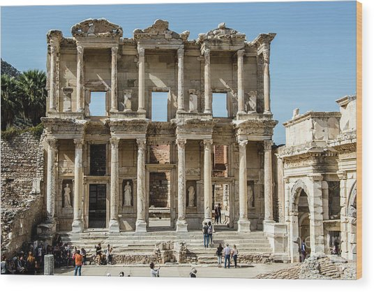 Celsus Library Wood Print
