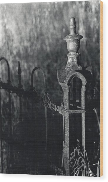 Cemetery  Fence Wood Print