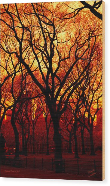 Cental Park In Red Wood Print by Diane C Nicholson