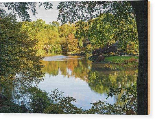 Central Park - City Nature Park Wood Print