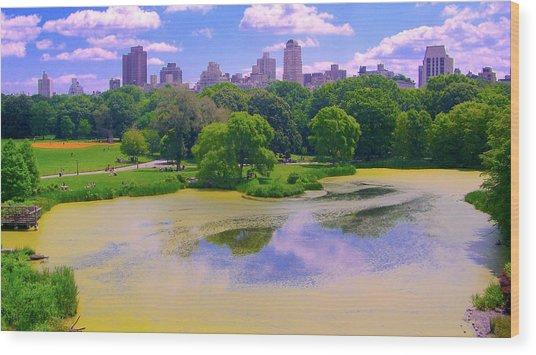 Central Park And Lake, Manhattan Ny Wood Print