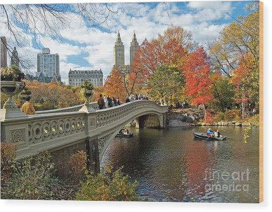 Central Park Autumn Cityscape Wood Print
