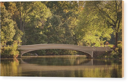 Central Park Bridge Wood Print