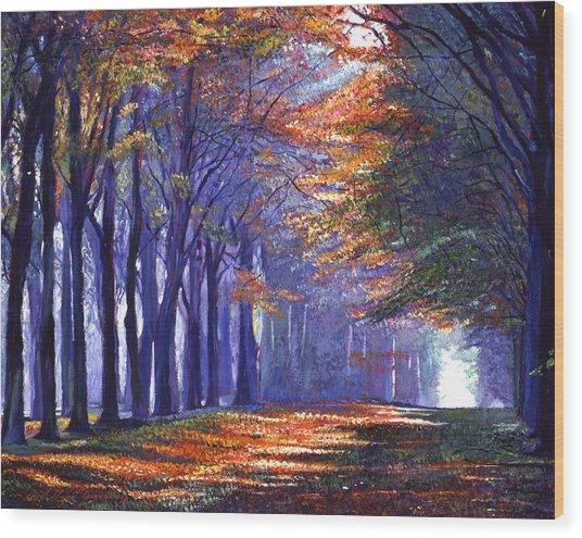 Central Park Light Wood Print by David Lloyd Glover