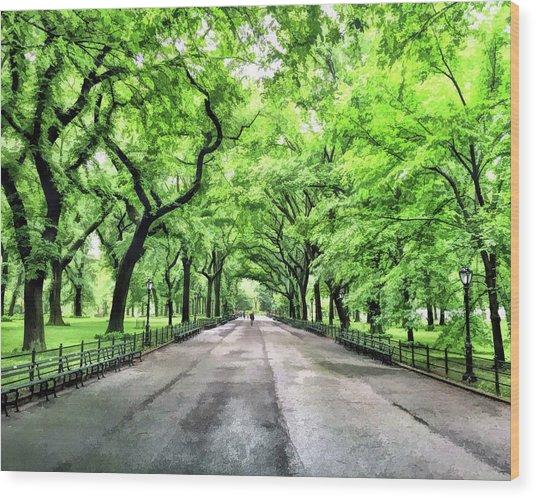 New York City Central Park Mall Wood Print