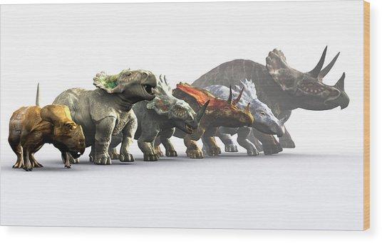 Ceratopsian Dinosaurs Wood Print by Christian Darkin