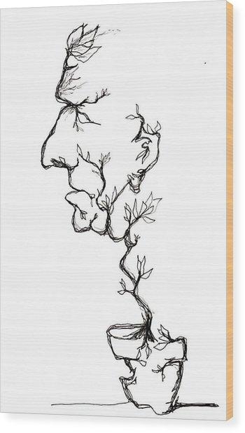 Cesar Salad-cracked Pots Wood Print