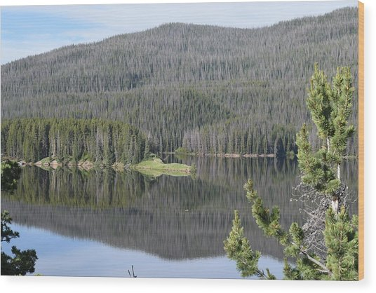 Chambers Lake Hwy 14 Co Wood Print
