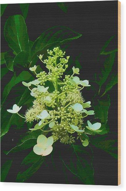 Chandelier 2 Wood Print by Michael Taggart II