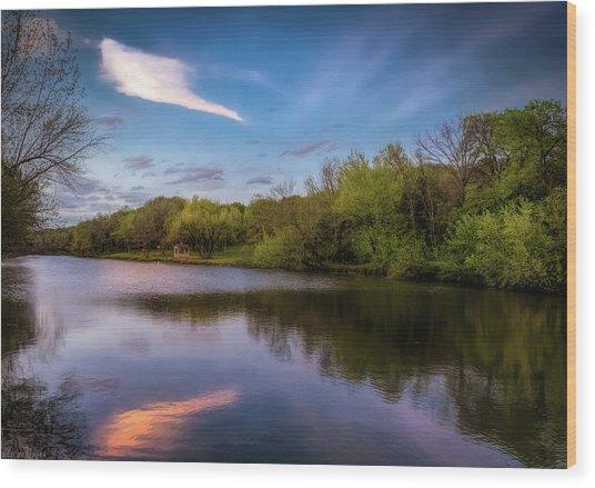 Chandler Lagoon Wood Print