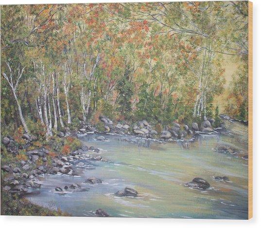 Changing Seasons Wood Print by Bev  Neely