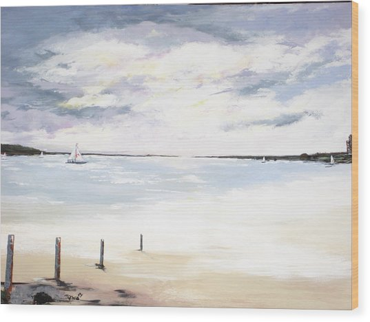Charles Island At Low Tide Wood Print by Marcia Crispino