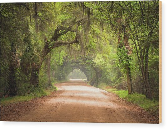 Charleston Sc Edisto Island Dirt Road - The Deep South Wood Print