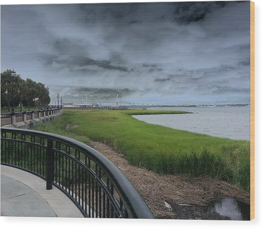 Charleston Waterfront Wood Print by Chris Short