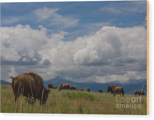 Charlie Russel Clouds Wood Print