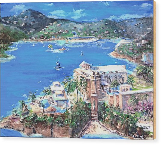 Charlotte Amalie Marriott Frenchmans Beach Resort St. Thomas Us Virgin Island Aerial Wood Print