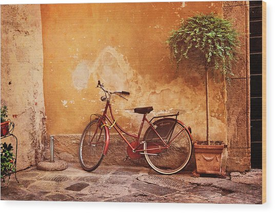 Charming Lucca Wood Print