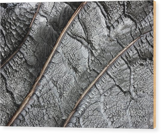 Charred Pine Bark Wood Print