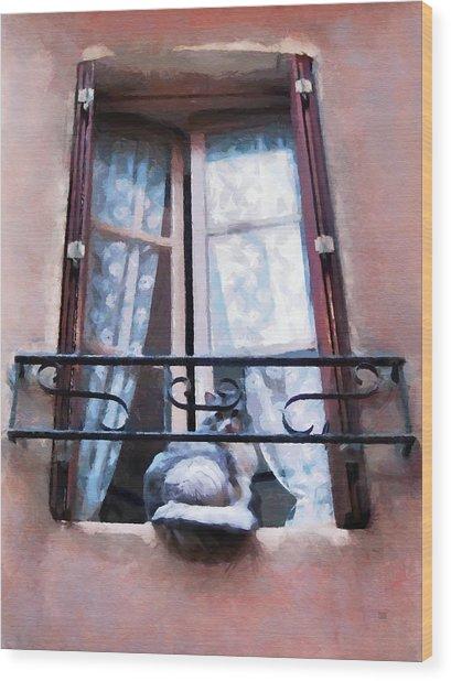 Wood Print featuring the painting Chat Bleu Dans La Fenetre Rose by Menega Sabidussi