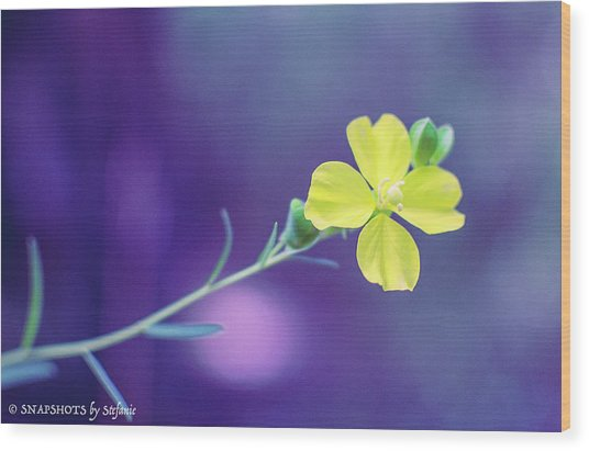 Cheer Up Buttercup Wood Print