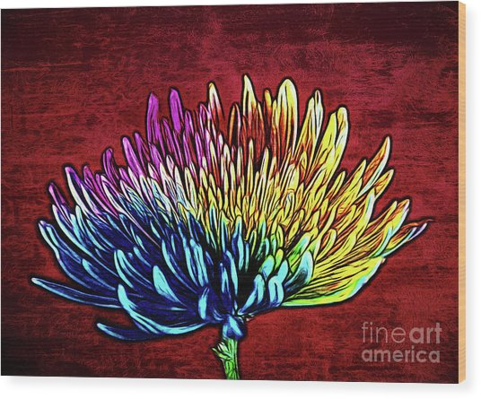 Cheerful 147 Wood Print