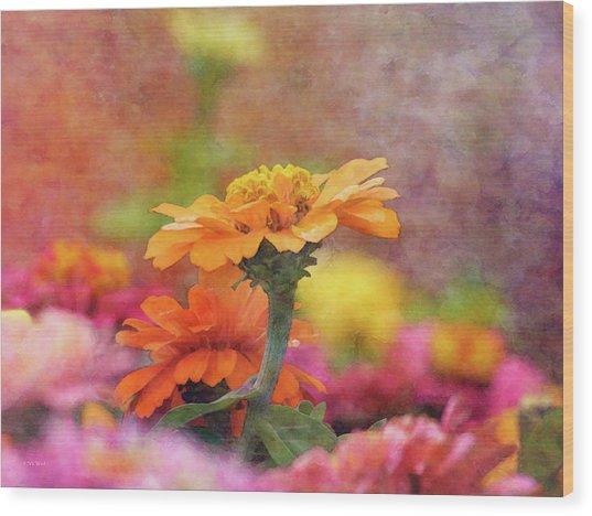 Cheerful Shades Of Optimism 1311 Idp_2 Wood Print