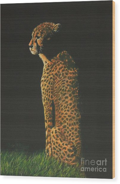 Cheetah At Sunset Wood Print