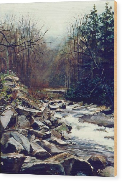 Cherokee Stream Wood Print by William  Brody