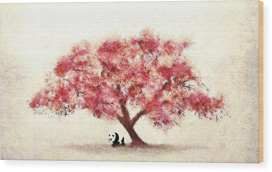 Cherry Blossom And Panda Wood Print