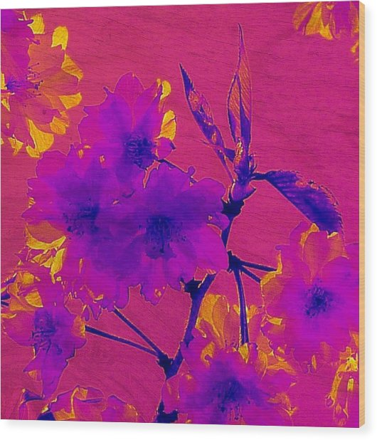Cherry Blossom Series 3 Wood Print by Jen White