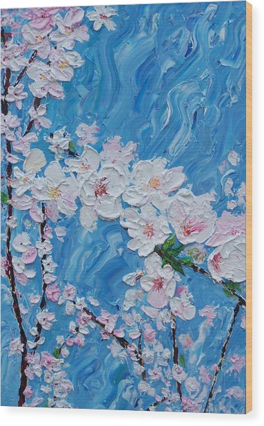 Cherry Blossoms 1 Wood Print by Timothy Clayton