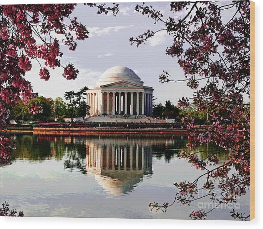 Cherry Blossoms At Jefferson Memorial Wood Print