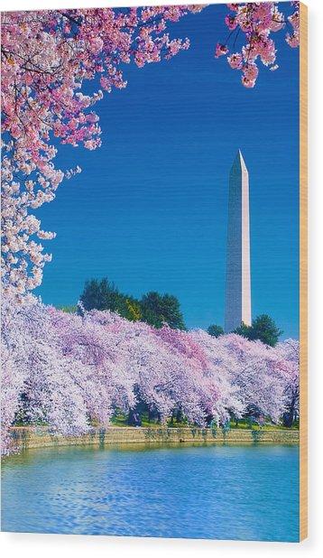 Cherry Blossoms Wood Print by Don Lovett