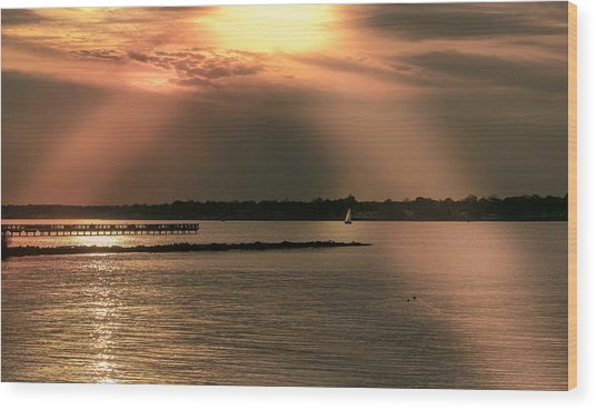 Chesapeake Gold Wood Print