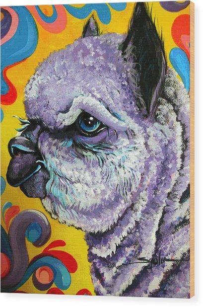 Cheshire Alpaca  Wood Print