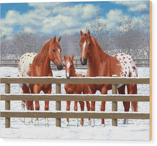Chestnut Appaloosa Horses In Snow Wood Print by Crista Forest