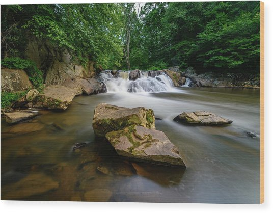 Chestnut Creek Falls  Wood Print